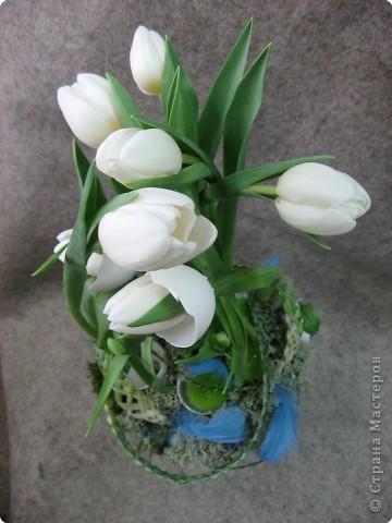 В нашем учреждении работает замечательный флорист. Ежегодно у нас проходят мастер-классы по флористике. В этом году мы выполняли композицию к Пасхе. Посмотрите работы, они все разные, хотя сделаны из одинаковых материалов: тюльпаны, яичная скорлупа, перья, бергасс, мох. И родилось чудо, которое радует нас и удивляет других. Спасибо, нашему педагогу.  Земля и солнце, Поля и лес - Все славят Бога: Христос Воскрес!     В улыбке синих Живых небес Всё та же радость: Христос Воскрес!  Вражда исчезла, И страх исчез. Нет больше злобы - Христос Воскрес!  Как дивны звуки Святых словес, В которых слышно: Христос Воскрес!  Земля и солнце, Поля и лес - Все славят Бога: Христос Воскрес!  (Л. Чарская)   фото 7