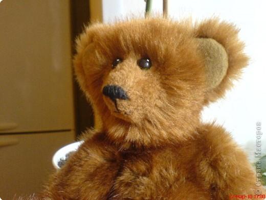 Наконец-то выкладываю своего первого мишку Тедди. Знакомьтесь - Оптимист. Сшит из искусственного меха (мохер пока не научилась боюсь брать - слишком дорого). Сшила его на день рождения дочки. фото 3