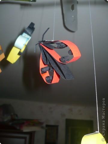 жуки на потолке!!! фото 2