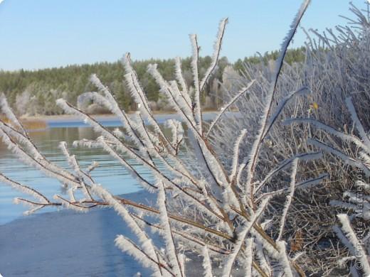Начало зимы всегда радостно и красиво! фото 1
