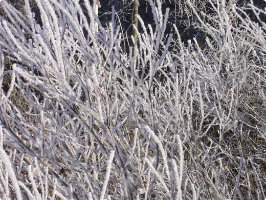 Начало зимы всегда радостно и красиво! фото 8