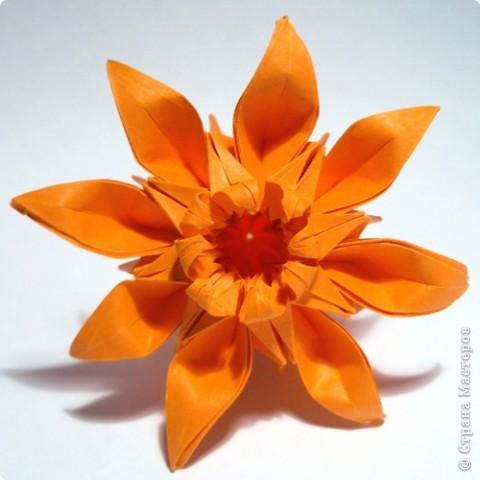 "готовый модуль-цветок для кусудамы ""Marguerite"", автор схемы - Mio Tsugawa фото 1"