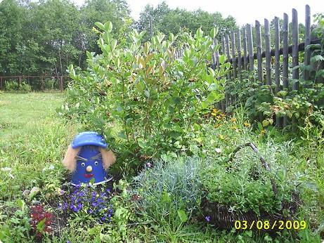 Если разбросать по саду вот такие прибамбасики. то работа спорится веселее. фото 2