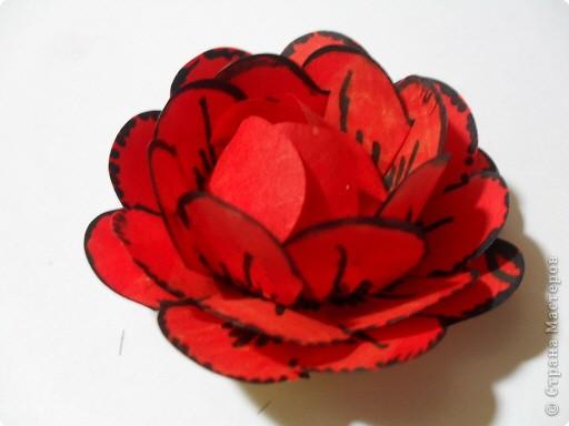 Цветы из стикеров фото 9