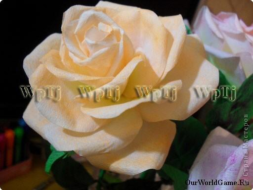 Мастер класс роза из бумаги фото 11