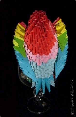 Вот такой попугайчик у меня получился фото 2