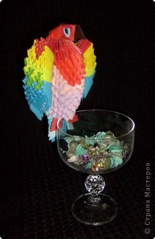 Вот такой попугайчик у меня получился фото 1