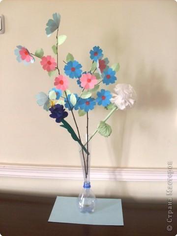 Цветущая ветка фото 4