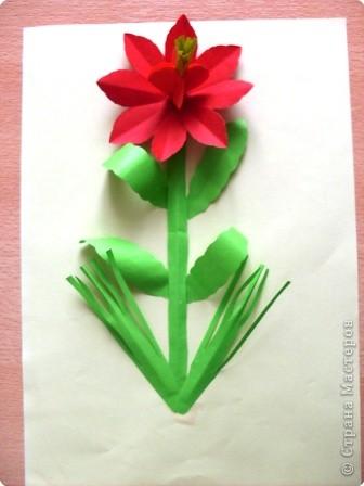 Готовый цветок фото 3