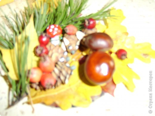 Поделка изделие Раннее развитие Начало учебного года Поделки с детками на тему осень Гуашь Жёлуди Листья Материал природный Пластилин Спички Шишки фото 4