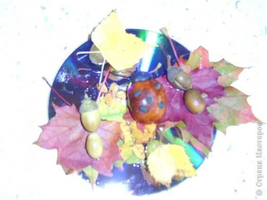 Поделка изделие Раннее развитие Начало учебного года Поделки с детками на тему осень Гуашь Жёлуди Листья Материал природный Пластилин Спички Шишки фото 8