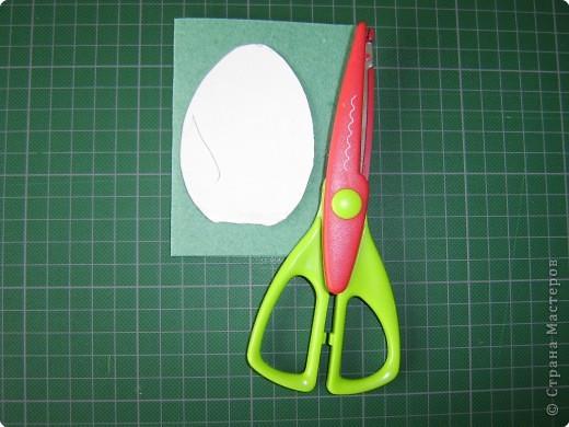Используемые инструменты и материалы   фото 2