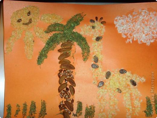 Это наша совместная работа с дочкой (3г.6 мес). Делали из различных круп и семян. Листья пальмы из высушенной петрушки.