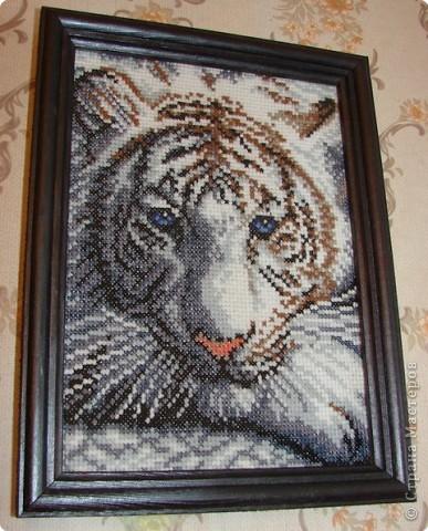 Вышивка крестом Белый тигр