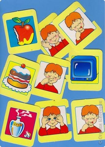 Наши органы чувств – наши помощники. Но знают ли наши дети о них? Однажды мне принесли стопку карточек. Без названия игры. Поэтому автор мне не известен. Но Вы самостоятельно можете приготовить подобную игру. Карточки двух видов – предметы и органы чувств человека.  фото 1