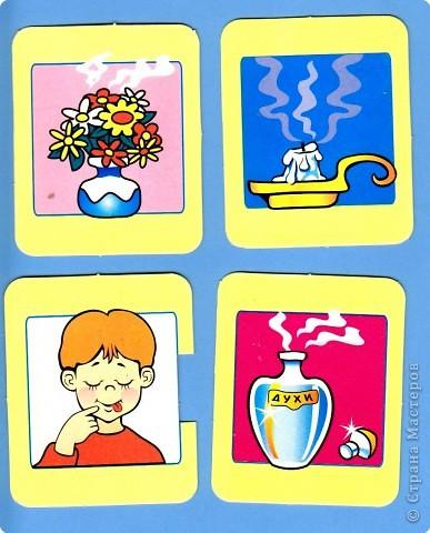 Наши органы чувств – наши помощники. Но знают ли наши дети о них? Однажды мне принесли стопку карточек. Без названия игры. Поэтому автор мне не известен. Но Вы самостоятельно можете приготовить подобную игру. Карточки двух видов – предметы и органы чувств человека.  фото 10