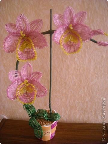 Орхидея из бисера со схемой Бисероплетение.