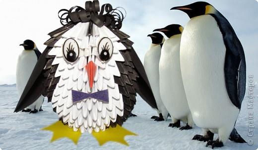 Мастер-класс Поделка изделие Оригами китайское модульное Мастер-класс Пингвин Бумага фото 9