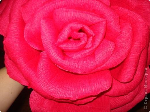 Делала в подарок розы.Решилась на мастер-класс. фото 23
