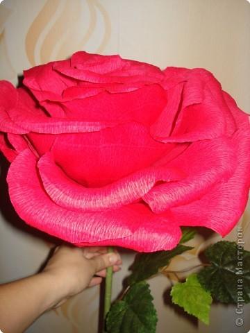 Делала в подарок розы.Решилась на мастер-класс. фото 24