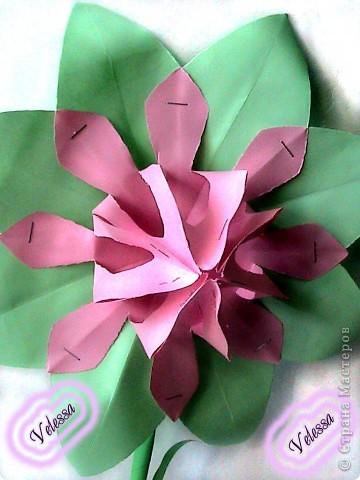 Этот цветочек сделала как-то, на подарок но ... он остался дома))  фото 3