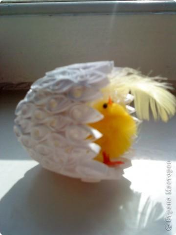 Петушок с гнездом. фото 3