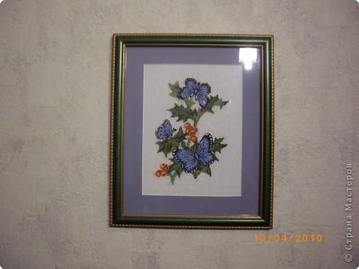 Синяя бабочка.  Синее поле-                 ультрамарин. Синие бабочки -                 гроздья рябин, Отблеск оранжевый,                розовый цвет, Это закат,                или может, рассвет.  фото 1