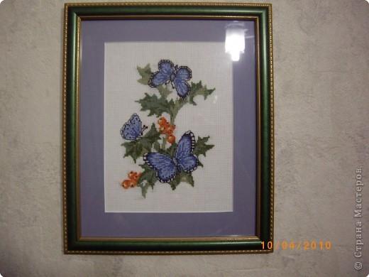 Синяя бабочка.  Синее поле-                 ультрамарин. Синие бабочки -                 гроздья рябин, Отблеск оранжевый,                розовый цвет, Это закат,                или может, рассвет.  фото 2