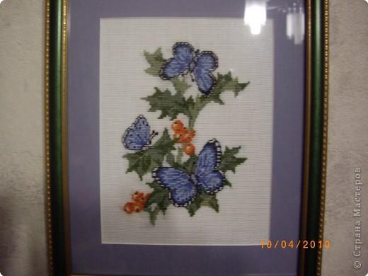 Синяя бабочка.  Синее поле-                 ультрамарин. Синие бабочки -                 гроздья рябин, Отблеск оранжевый,                розовый цвет, Это закат,                или может, рассвет.  фото 3