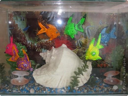 Как сделать аквариум своими руками в детском саду