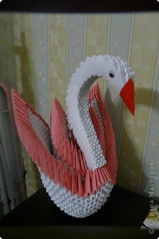 Оригами модульное: Лебедь фото 2