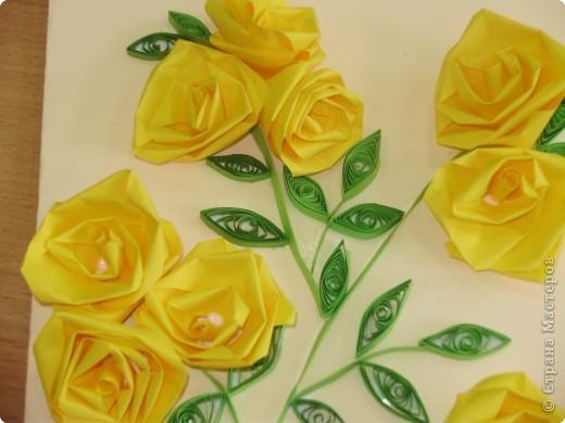 Квиллинг: Желтые розы фото 2