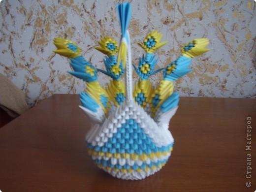 Оригами модульное: Лебеди с хвостом веером фото 2