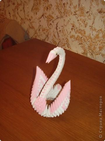 Оригами модульное: Подборка лебедей с двумя крыльями