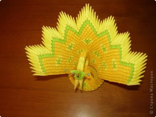 Оригами модульное: Фениксы (по схеме павлина, Peacock)