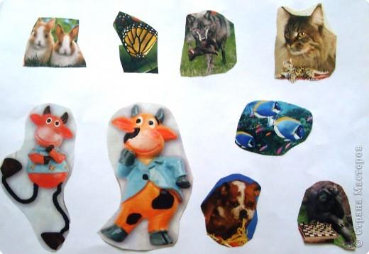 Поделки домашних животных