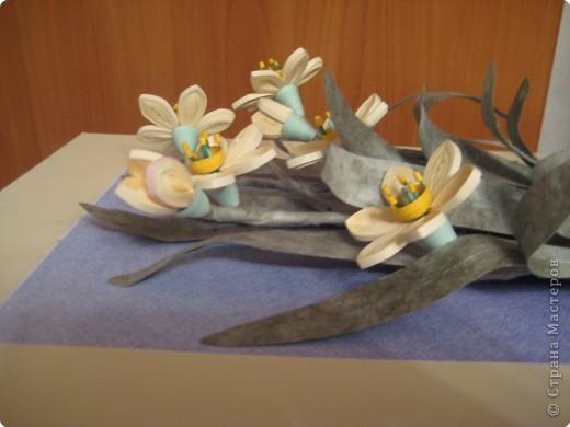 Это последняя из больших работ на курсах. Работа Большие нарциссы в рамке, купленной в http://www.ramkiquilling.blogspot.com/ фото 3
