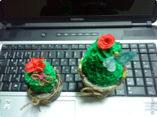 В моём саду появились два Кактусёнка. Сделала их  для подарка на день рождения. фото 4
