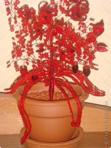 Бисероплетение: Красненькое деревце фото 2