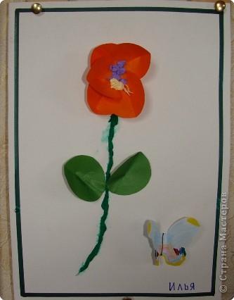 Вот такая выставка цветов встретила однажды мамочек. (в апреле :):):)) фото 10