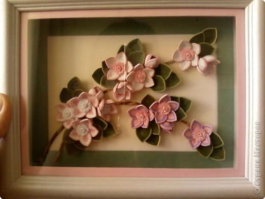 Мастер класс по квиллингу цветы сакуры
