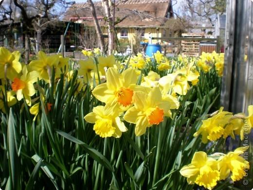 - Не определена -: Весна 2010 фото 4
