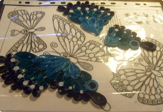 Квиллинг: Бабочка фото 2