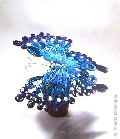 Квиллинг: Бабочка фото 4