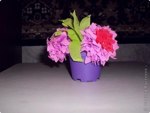 Цветы в горшочке бумага гофрированная