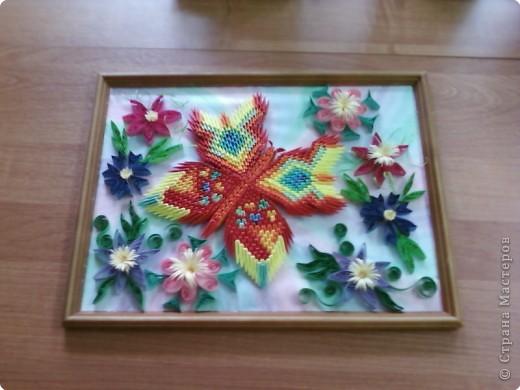 Оригами модульное: Бабочки летают, бабочки...