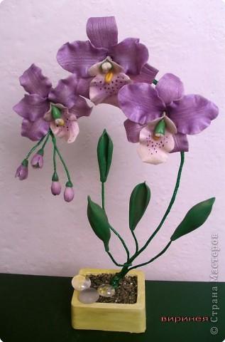 Лепка: холодный фарфор. орхидея