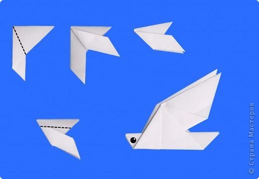 Оригами Оригами Голубь и