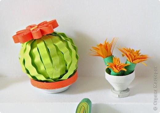 Квиллинг: Коллекция кактусов фото 6