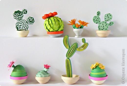 Квиллинг: Коллекция кактусов фото 2